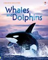 Discovery: Whales and dolphins