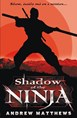 Shadow of the Ninja