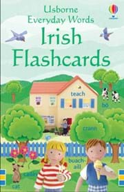 Everyday Words Irish flashcards