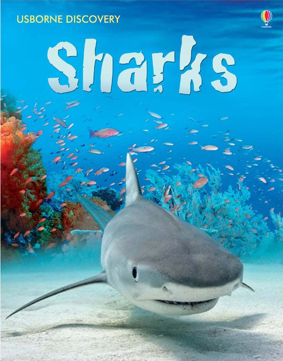 discovery sharks u201d at usborne children u0027s books