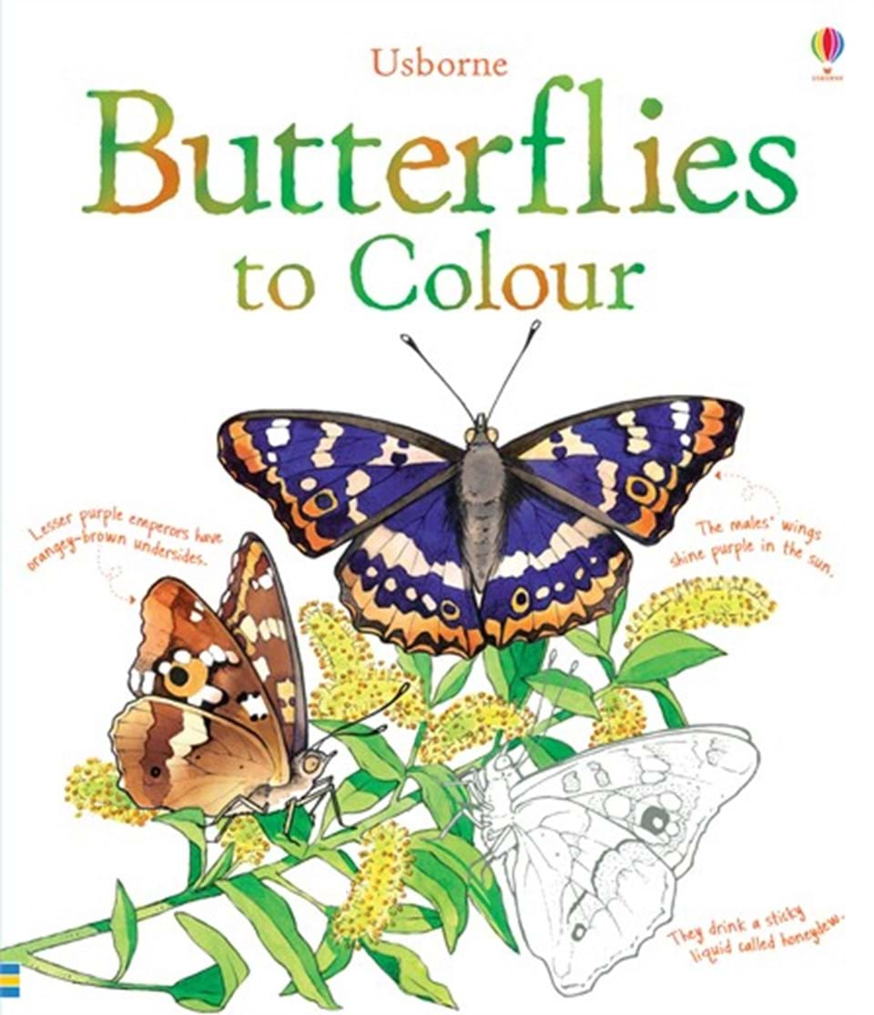 butterflies to colour u201d at usborne books at home