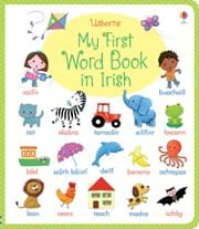 My first word book in Irish