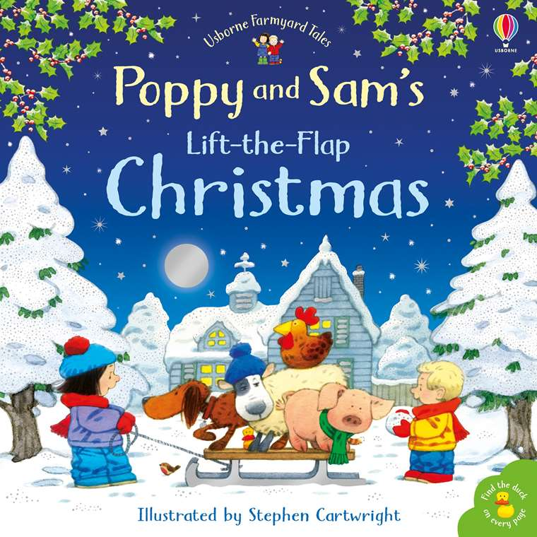 Its Christmas Eve.Poppy And Sam S Lift The Flap Christmas At Usborne