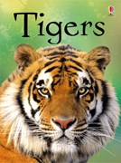 'Tigers' book cover