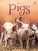 'Pigs' book cover