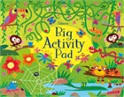 'Big activity pad' book cover