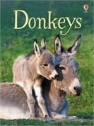 'Donkeys' book cover