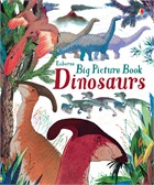 'Big picture book dinosaurs' book cover
