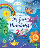 'Big book of numbers' book cover