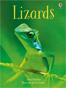 'Lizards' book cover