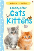Looking after cats and kittens