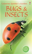 Spotter's Guides: Bugs and insects