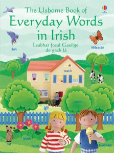 Everyday Words in Irish