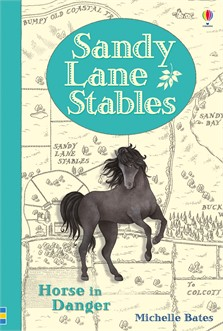 horse in danger at usborne books at home. Black Bedroom Furniture Sets. Home Design Ideas