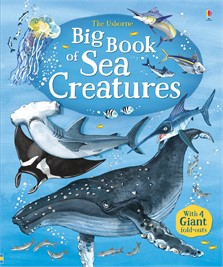 Big book of sea creatures