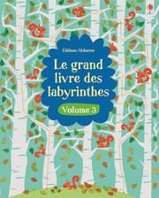 Le grand livre des labyrinthes - volume 3